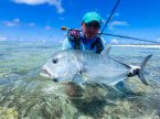 Giant Trevally - GT