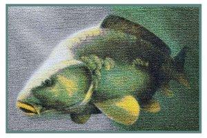 Delphin Rohoľ 3D kapr