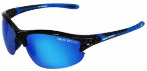 Delphin Brýle SG Sport