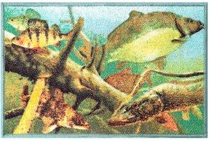 Delphin Rohož AQUA