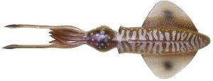 Savage Gear Gumová Nástraha 3D LB Swim Squid Cuttlefish - 9,5 cm 5 g