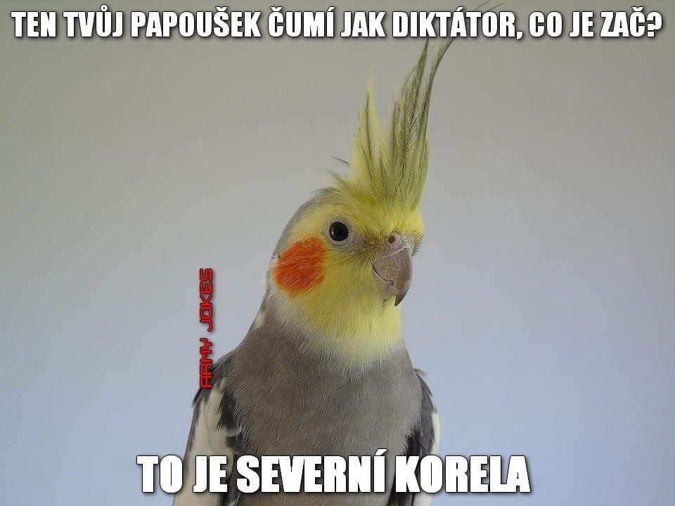https://www.mrk.cz/Data/Pics/2018/31/1627657_c5681.jpg